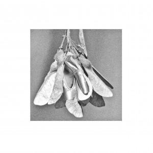 balletschoen2.1